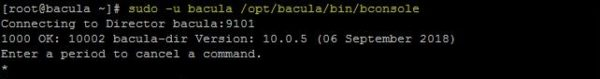 bacula-enterprise-backup-vmware-18