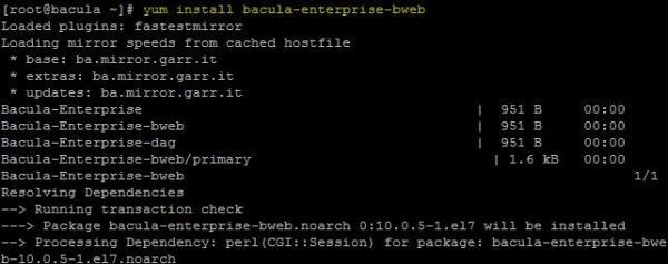 bacula-enterprise-backup-vmware-21